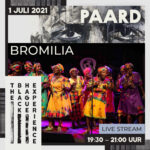 TBHE-Bromilia